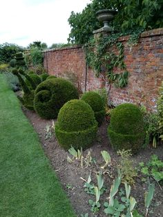 rockingham castle gardens topiary and garden ideas. Black Bedroom Furniture Sets. Home Design Ideas