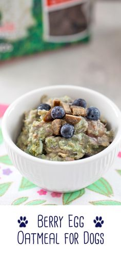 This Berry Egg Oatmeal for Dogs is a fiber and protein-packed breakfast made with love. Top with treats for an extra special meal for your pup! Dog Breakfast, Homemade Breakfast, Homemade Dog Cookies, Homemade Dog Food, Dog Treat Recipes, Dog Food Recipes, Oatmeal For Dogs, Best Puppy Food, Wet Dog Food
