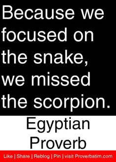 Because we focused on the snake, we missed the scorpion. - Egyptian Proverb. Ha! As a Scorpio snake, watch out - dangerous at both ends...