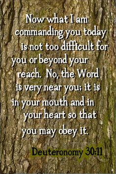 Deuteronomy 30:11 ~ The Word is very near you: it is in your MOUTH.... [speak it out every day]....