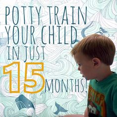 how to potty train your child in just 15 short months. this is the potty training plan you've been looking for (if you hate happiness).