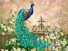 Peacock artwork