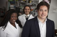 Metastatic cancer cells implode on protein contact | Cornell Chronicle