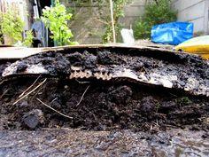 De lasagna methode. Karton, aarde, karton en aarde. Mest, compost, zeewier of anders ook mogelijk. Vorm van mulchen om onkruid geen kans te geven en te starten met vruchtbare grond.