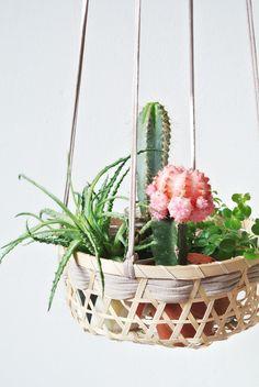 Suspension florale !