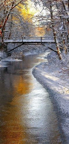 6. Cold winter in Sweden                                                                                                                                                      More