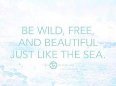 Light Mint Green, Sea Shells, Feelings, My Love, Inspiration, Beautiful, Warm, Biblical Inspiration, Seashells