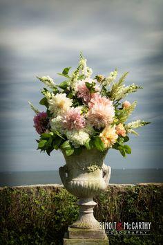 Spectacular flower....#Misslewood www.benoit-mccarthy.com