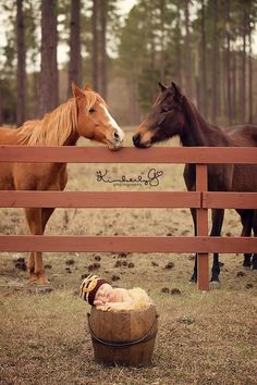 baby!!!! :) I wonder if the baby will grOw up and love horses!!!! :) ;)
