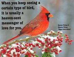 Heaven-sent messengers :)