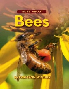 Buzz About Bees (Hardcover)