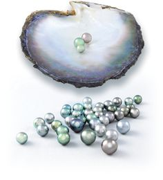 Pearls from the Sea