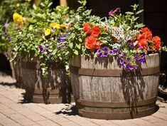 Wine barrel planters look super chic and give your yard a vineyard feel. I like when two, filled with flowers, flank a doorway. A simple, upscale look!