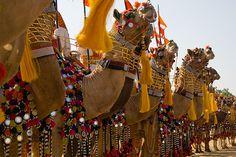 Desert Festival-Inaugural Procession (Shobha Yatra) by anupama kinagi, via Flickr