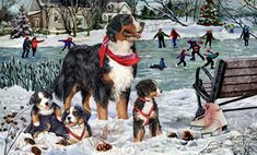"""New 2016! Bernese Mountain Dog Christmas Holiday Cards are 8 1/2"""" x 5 1/2"""" and come in packages of 12 cards. One design per package. All designs include envelopes, your personal message, and choice of greeting. Select the inside greeting of your choice from the menu below.Add your custom personal message to the Comments box during checkout."""