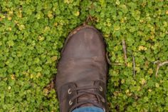 Top Qualities to Check When Buying Work Boots for Flat Feet - Grill Info Flat Feet, Hiking Boots, Flats, Simple, Green, Stuff To Buy, Lifestyle, Check, Tips
