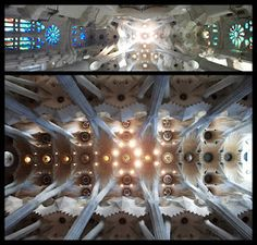 El bosc de pedra. Sagrada Família. 2011