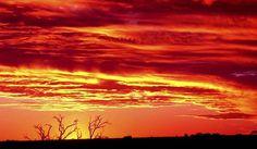 Boulia sunset, Queensland