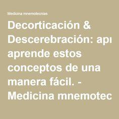 Decorticación & Descerebración: aprende estos conceptos de una manera fácil. - Medicina mnemotecnias