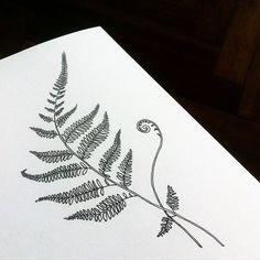 Fern. Available. Эскиз свободен. #dashatattooer #tattoo #tattooart #ferntattoo…