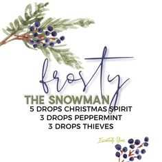 Christmas Planning, Oil Mix, Essential Oil Diffuser Blends, Young Living Essential Oils, Distillery, Home Remedies, Peppermint, Hair Accessories, Spirit
