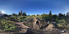Sept. 10 -- Google street view of Our Garden.
