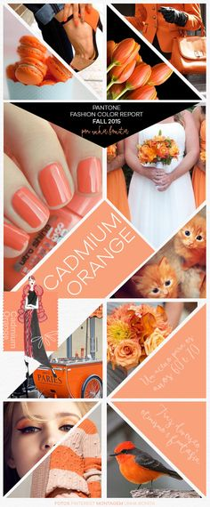 Pantone Fashion Color Report Fall 2015 Cadmium Orange