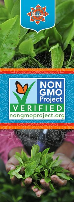 Bhakti Chai, in our commitment to sourcing sustainable, all-natural products from regional farmers, has received third-party endorsement from the Non-GMO Project that our products are Non-GMO Project Verified. Learn more about what being a non-GMO company means to us.