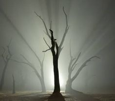 Namibian Nights – Stunning Deadvlei Time-Lapse. BelAfrique your personal travel planner - www.BelAfrique.com