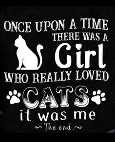 new Ideas dogs happy quotes cats I Love Cats, Cute Cats, Funny Cats, Cats Humor, Crazy Cat Lady, Crazy Cats, Cat Anime, Animal Quotes, Cat Memes