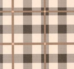 Tartan wall paper, perfect for a library.