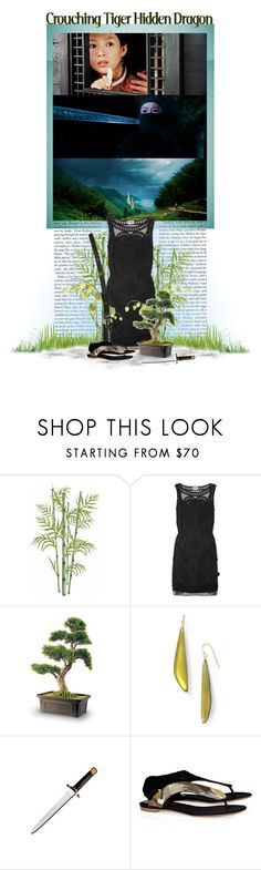 """11/50. Crouching Tiger Hidden Dragon (2000)"" by mushroomstew ❤ liked on Polyvore featuring Alice by Temperley, Alexis Bittar, S.W.O.R.D., Vionnet, ang lee, china, crouching tiger hidden dragon and kung-fu"