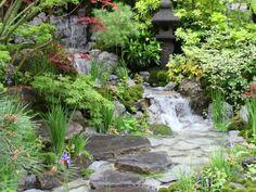 Astoundingly talented Japanese garden designer Kazuyuki Ishihara created the Edo no Niwa Artisan Garden, a winner of Chelsea gold.