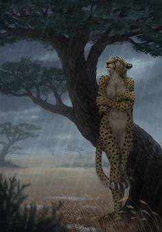 f Tabaxi Monk female Rain Steppe wilderness Storm lg Arte Furry, Furry Art, Character Inspiration, Character Art, Character Design, Fantasy Creatures, Mythical Creatures, Neko, Bastet