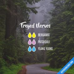 Freyed Nerves - Essential Oil Diffuser Blend