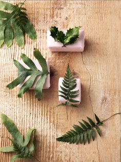 Photography by Frank Brandwijk I Styling Sandra de Cock I 'Nature Presents' 'Natural Surprise' 'Sinterklaas' 'Fresh Leaves' 'December Gift Wrapping'