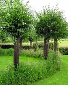 Landscape Architecture, Landscape Design, Garden Design, Small Gardens, Outdoor Gardens, Garden Paths, Garden Landscaping, Topiary Garden, Permaculture Design