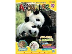 REVISTA: AMIGOS ANIMALES Fauna, Panda Bear, Girlfriends, Journals, Animales, Panda, Pandas