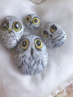 Painted white owls on rocks