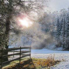 First day of snow - Limited Edition 1 of 15 Photograph Digital Photography, Art Photography, Infinity Photo, Paper Artist, One Day, Mists, Saatchi Art, Fairy Tales, Snow