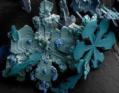Copo de nieve observado bajo un Microscopio Electrónico de Barrido de baja temperatura. Fuente: Unit Snow Page.