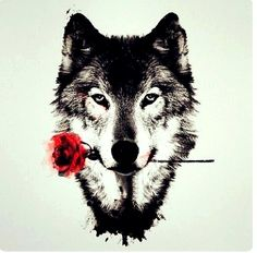 """On a hot summer night would you offer your throat to the wolf with the red roses"""