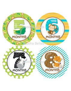 ON SALE Safari Baby Month Stickers Monthly Baby by BuddhaBellies