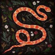 Emilie Simpson #viper #snakeillustration