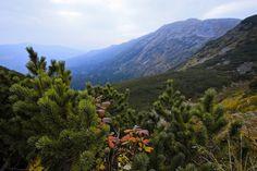 Polskie góry na jesień: Beskid Żywiecki. Babia Góra w połowie listopada / Flickr.com Poland MFA CC BY-ND