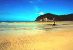 Woolleys Bay, Tutukaka Coast, Northland, New Zealand New Zealand, Coast, Beach, Water, Holiday, Travel, Outdoor, Gripe Water, Outdoors