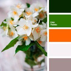 Color palette · bright orange and gray Orange Color Palettes, Red Colour Palette, Design Seeds, Brown Color Schemes, Bedroom Color Schemes, Color Balance, Green And Orange, Orange Shades, Gray Green