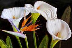 arte-en-pinturas-al-oleo-de-flores-realistas