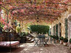 - Sous la tonnelle fleurie et contre le mur , un alignement de topiaires en pot .
