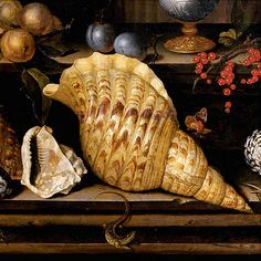 Balthasar van der Ast [1593/94–1657 Dutch Golden Age painter specializing in still lifes of flowers and fruit.] Painting in the collection of the Musée de la Chartreuse, Douai, France